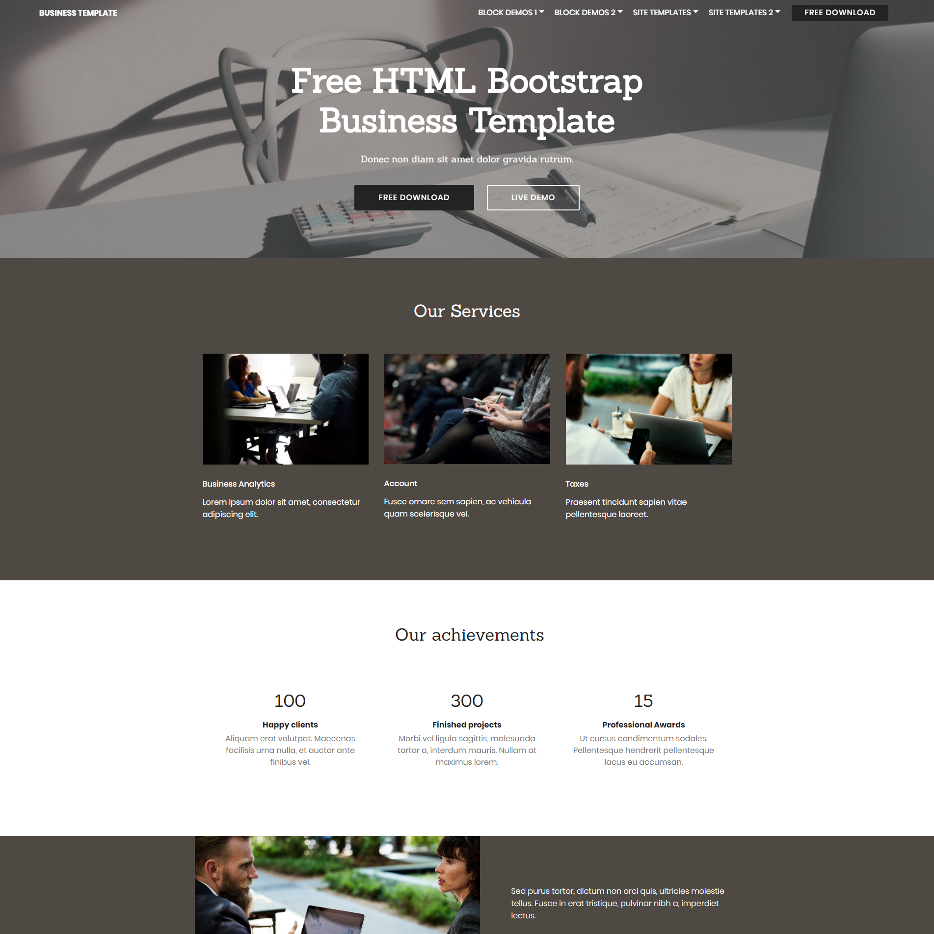 CSS3 Bootstrap Business Templates